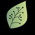 Acck Logo